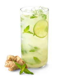 Recipe Results Ginger Mojito