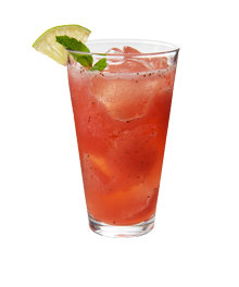 Recipe-Results-StrawberryAguaFresca