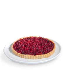 Result Cranberry Tart 2